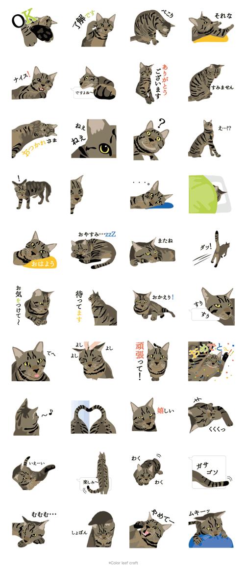 猫のなぎまるLINEスタンプ